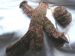 Sockapal2za_socks2